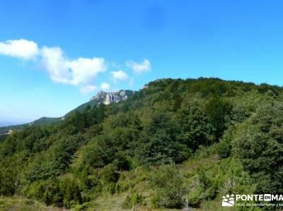 Hayedos Rioja Alavesa- Sierra Cantabria- Toloño;viajes junio floracion jerte viajes enero